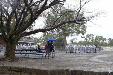 นักเรียนในเสื้อฝนวันฝนพรำ  ผู้บุกรุกยุคปัจจุบัน