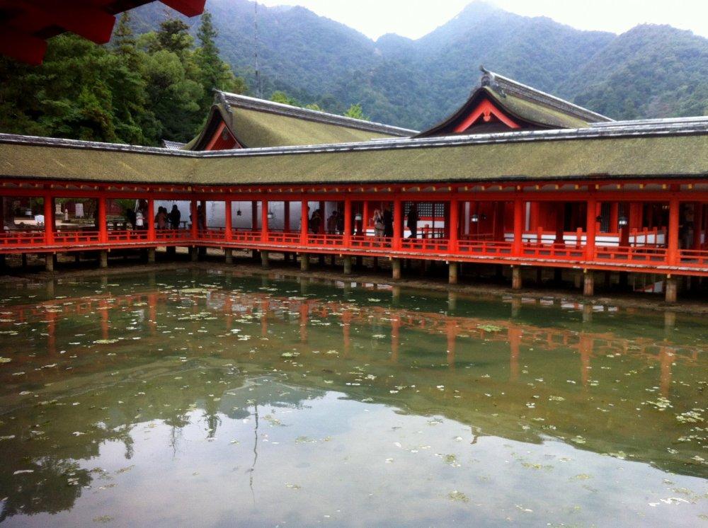 The 'Floating Shrine' of Miyajima
