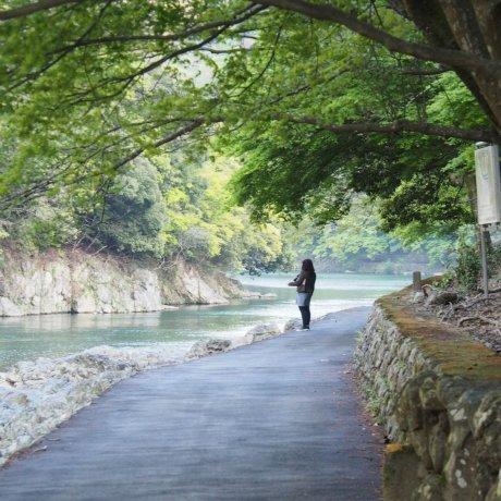 Kyoto Eco Trip Bicycle Hire