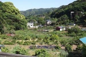 Khung cảnh nhìn từ khu vườn