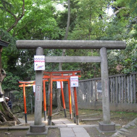 Nezu Shrine, Bunkyo-ku