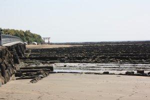 L'île d'Aoshima