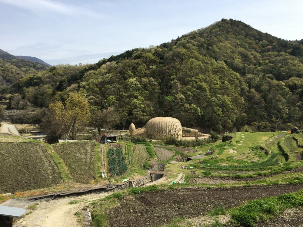 Dream of Olive is hard to miss amidst the terraced rice fields of Nakayama