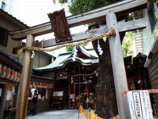 Brown torii gate