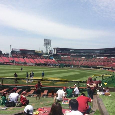 Kiat Menonton Pertandingan Baseball