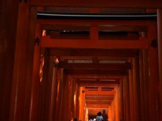 Cahaya di ujung terowongan tak berujung