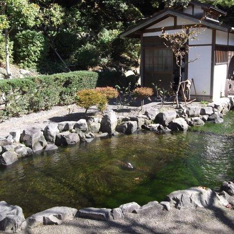 Taman Kiyomizuyama di Shizuoka