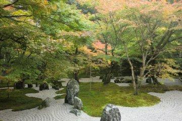 Main garden 2
