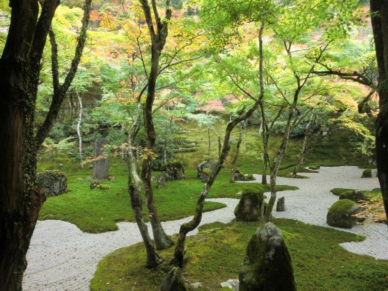 Main garden (October)