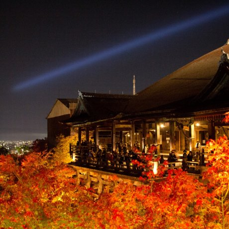 Illuminations au Kiyomizu-dera