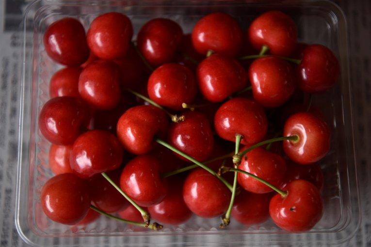 Cherry Season in Yamagata