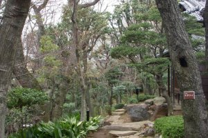 Take time to get lost in the garden's pathways