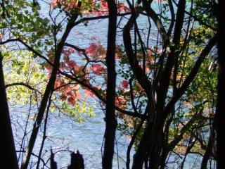 Usagi Jima Island, on the lake