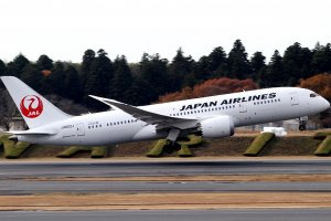 Japan Airlines JAL Boeing 787 Dream liner taking off. Currently JAL flies the Boeing 777 but there could be plans to introduce the 787 on the Sydney to Tokyo route in the future.