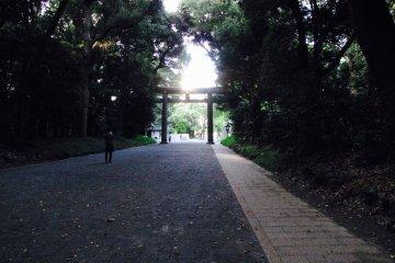 Dusk approaches during an evening run in Yoyogi Park