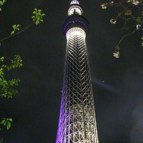 Tokyo Skytree and Asakusa at Night