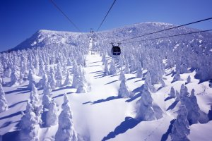 Snow monsters from Zao Ropeway
