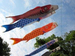 Berbagai dekorasi ikan (koi) untuk merayakan Boy's Day pada 5 Mei