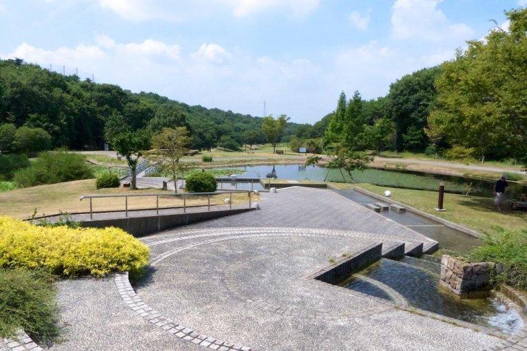 Săn nấm ở Mikiyama