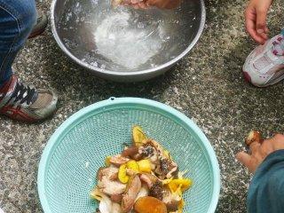 ทุกคนช่วยกันล้างเห็ดเพื่อทำอาหารกลางวัน