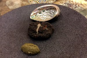 Abalone with its shell