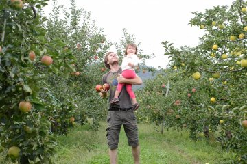 Apple picking with a kid