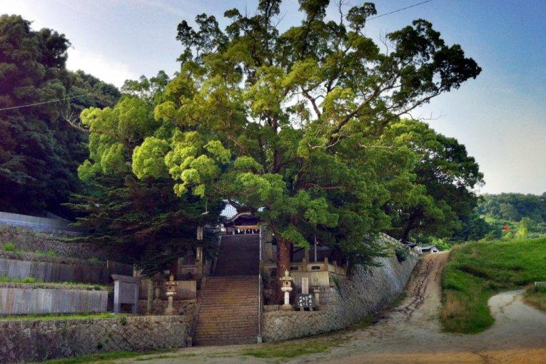 Kamo Shrine in Imabari