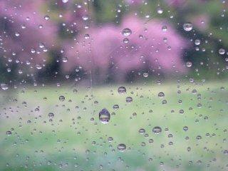 우산을 통해