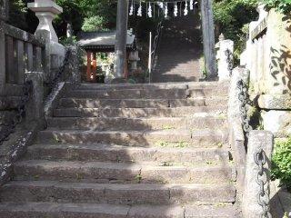 Menaiki tangga dan memasuki hutan