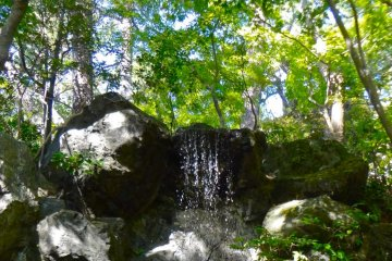 A small waterfall in the garden