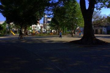 Park near the sharehouse