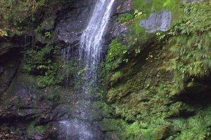La Cascade au Biwa