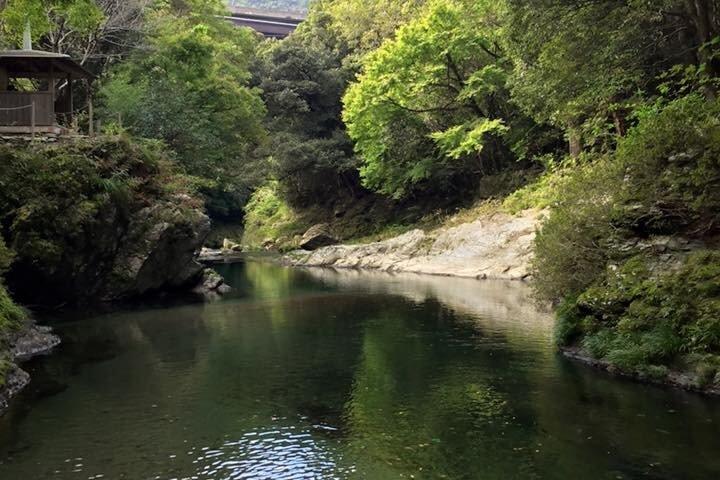 Kiri no Mori