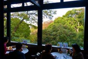 喫茶室の大きな窓と元町公園の緑