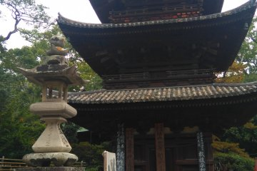 Flowers, a pagoda, and zen circles...