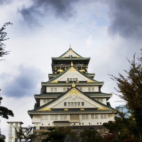 Vườn thành cổ Osaka