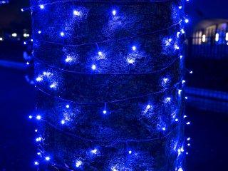 Cận cảnh của những anh đèn màu xanh
