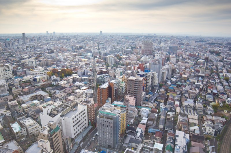 The view of Tokyo that Carrot Tower provides you with