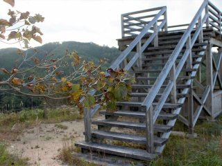 If you feel like walking up a big hill, you can be rewarded with a great view from this lookout tower