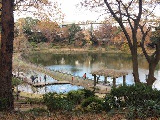 와타우치 연못