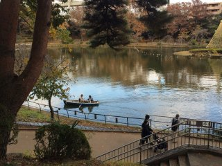 와타우치 연못. 배을 빌리세요!