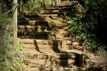There are quite a few stairs on the way up, but all are nicely shaded and in the woods.