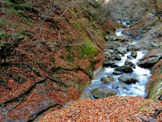 Sông Fuefuki - một dòng suối đá trong núi rừng