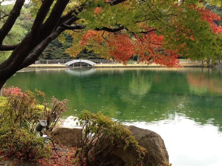 Seasonal colors at Tokugawaen.