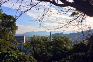 Tokushima University Area