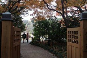 Koishikawa Korakuen's beauty is calling