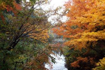 Omyia Pond in Ochidani Park