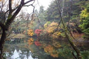 Omyia Pond in Ochidani Park: Fall Reflection