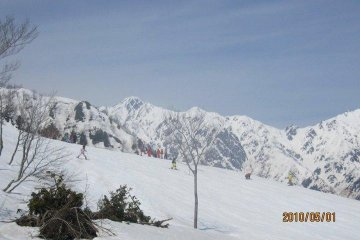 Top of Goryu in May