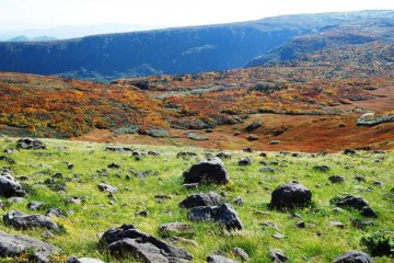 Mount Gassan in October - mountain vegetable pickers like Haga-san find edible plants everywhere during the warm season